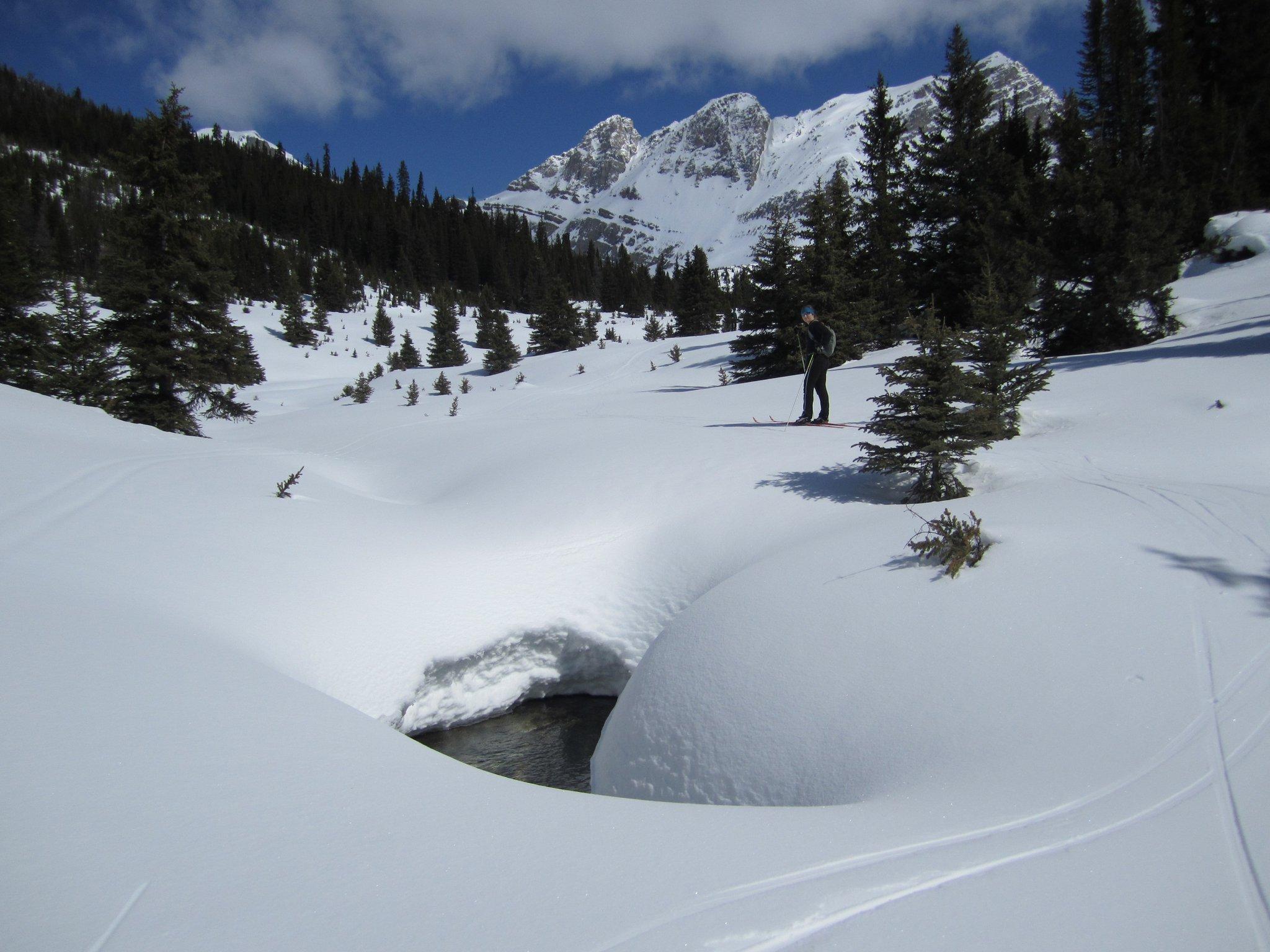 skoki-ski.jpg